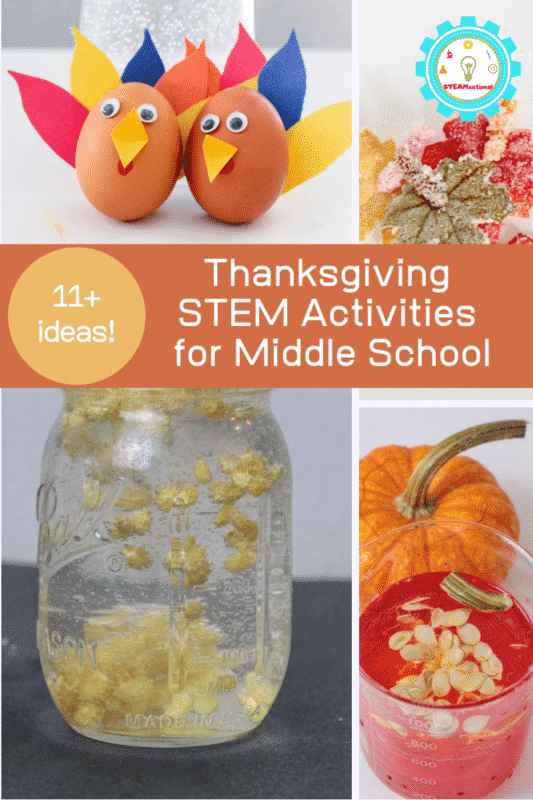 Thanksgiving STEM activities for middle school go beyond simple Thanksgiving STEM activities and give a little more meat to STEM. Middle schoolers should be challenged to think outside the box and really apply the scientific knowledge that they have learned to solve real world problems. But that doesn't mean science can't be fun!