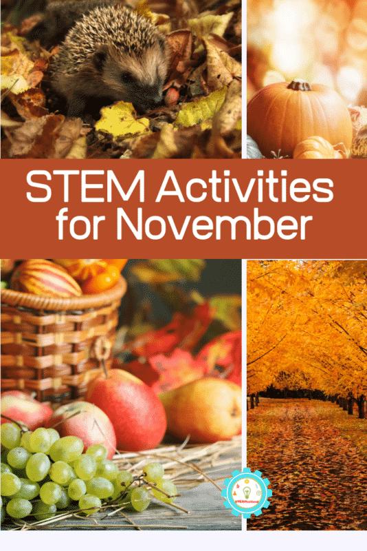november stem activities