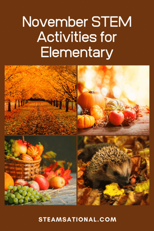 Fall science is so much fun! Try these NGSS-aligned hands-on November STEM activities with your classroom this year!