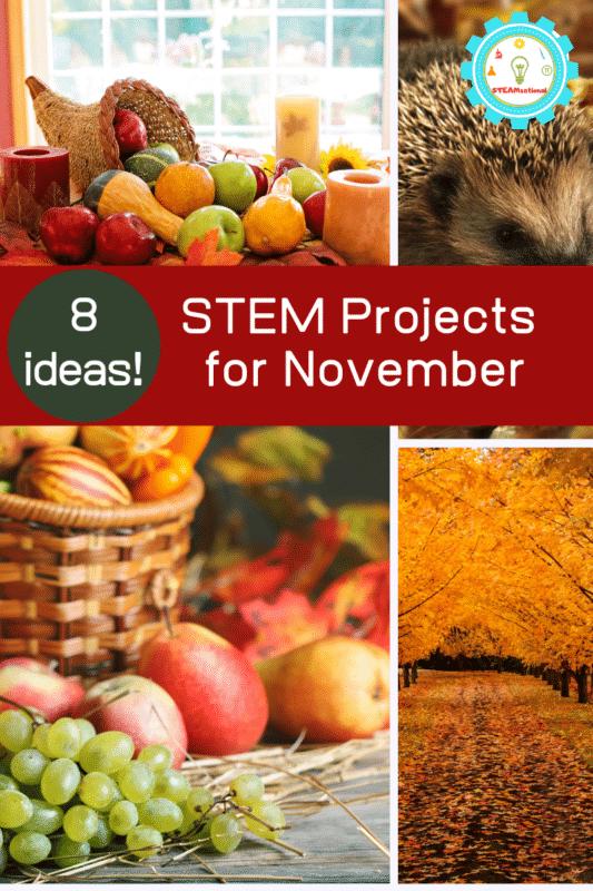 november stem projects