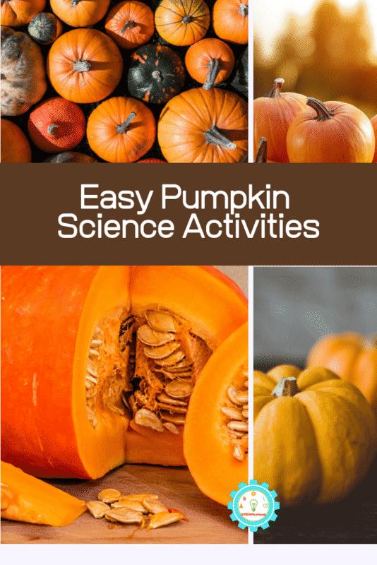 pumpkin science activities
