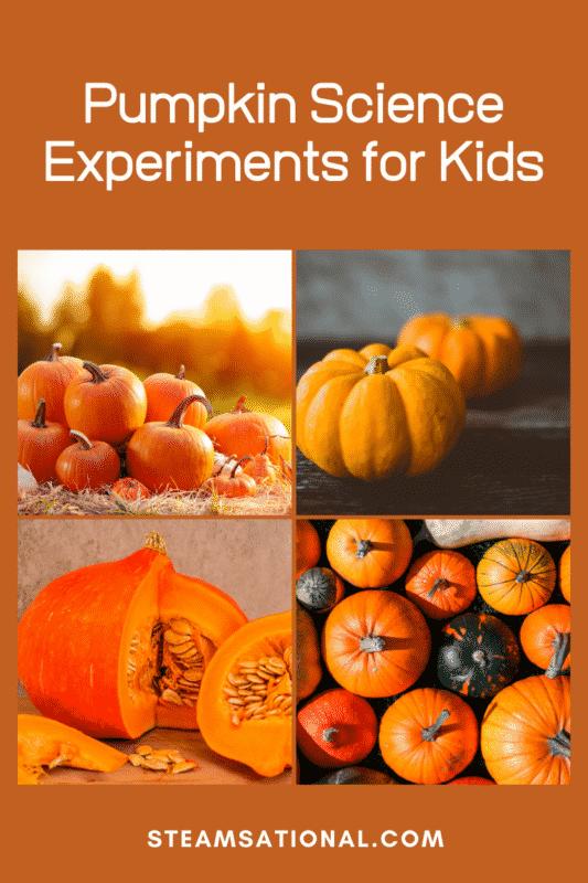 pumpkin science experiments