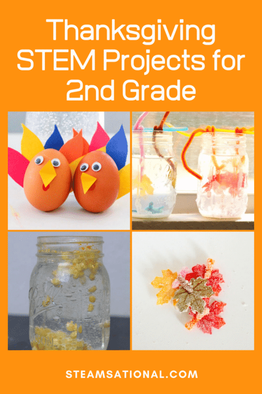 thanksgiving STEM projects 2nd grade
