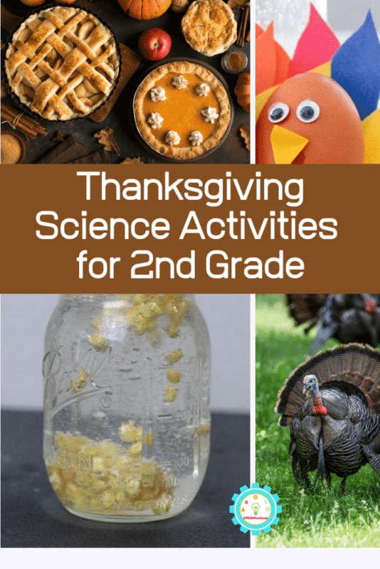 thanksgiving science activities for 2nd grade