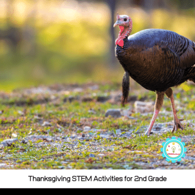 Thanksgiving STEM Activities for 2nd Grade