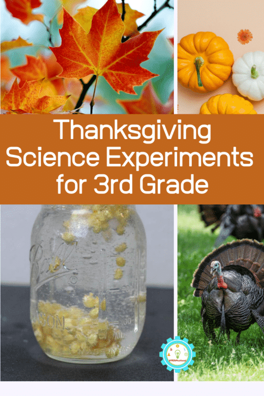 thanksgiving science experiments for 3rd grade