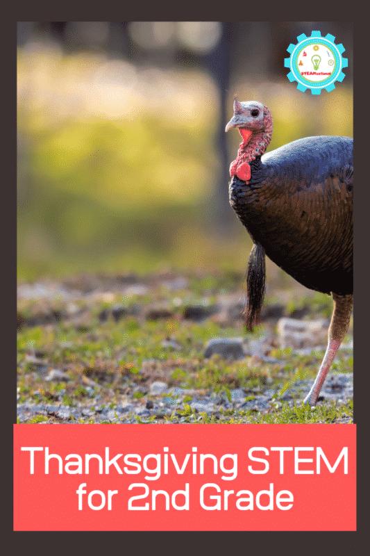 thanksgiving stem for 2nd grade