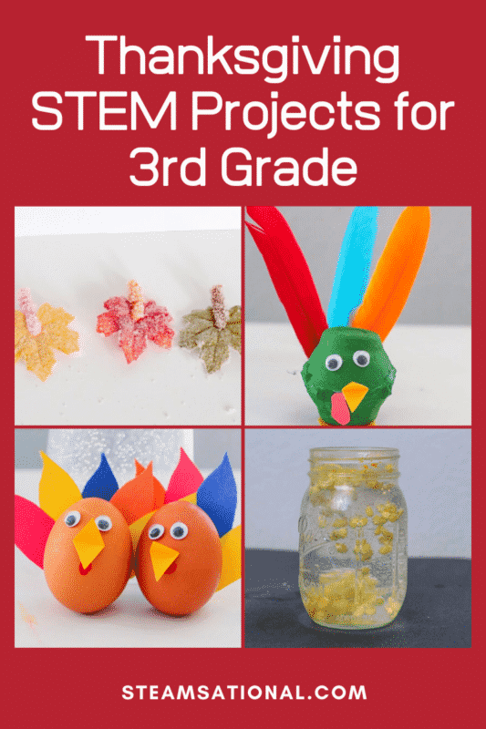 thanksgiving stem projects 3rd grade