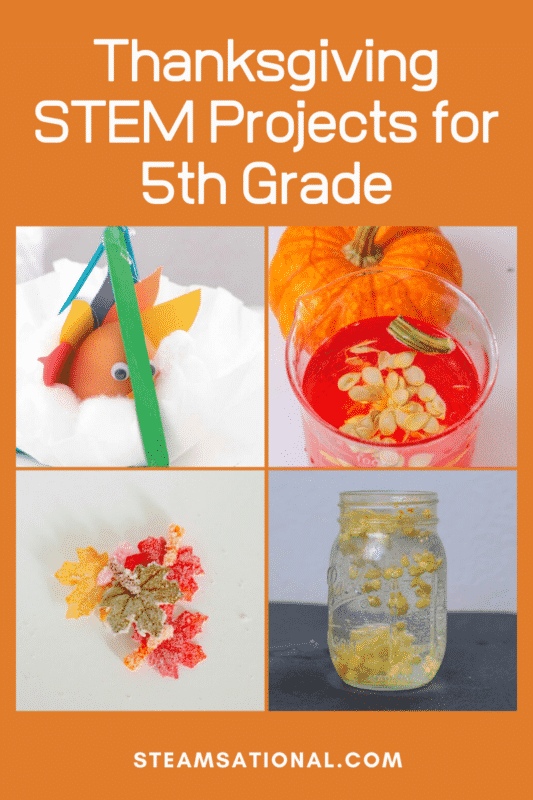 thanksgiving stem projects 5th grade