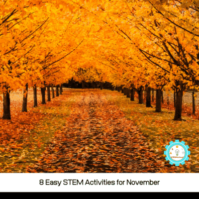8 Exciting November STEM Activities for Elementary