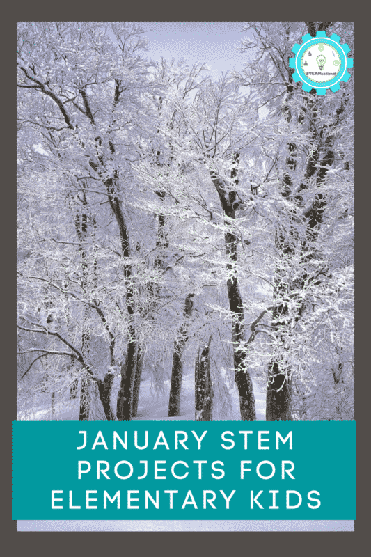 January STEM Projects for Elementary Kids