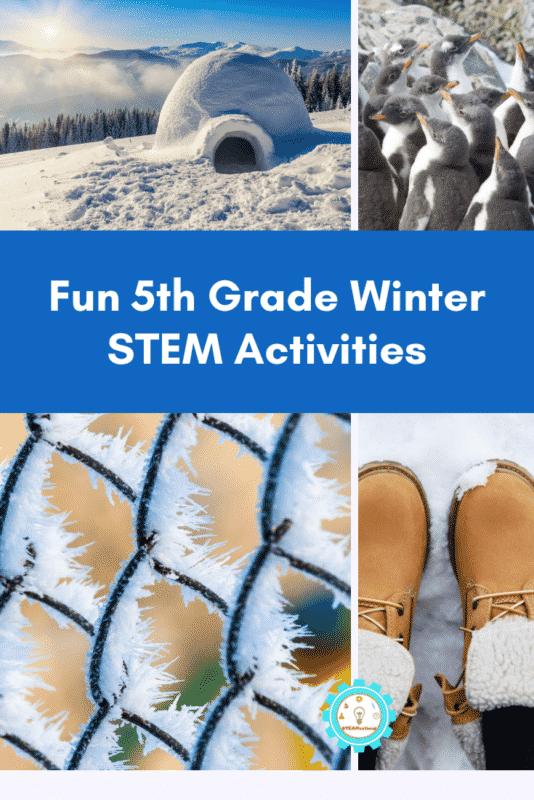 fifth grade winter stem activities