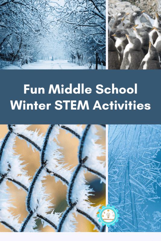 fun Middle School Winter STEM Activities