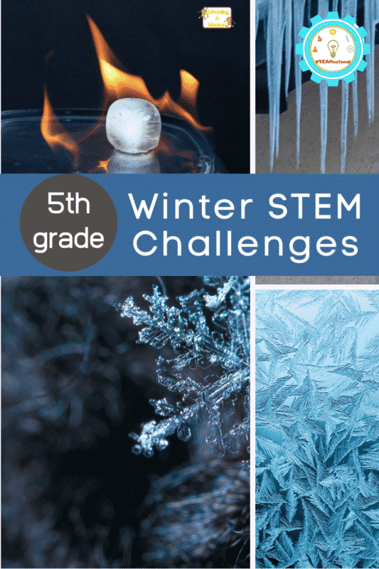winter stem challenges for 5th grade