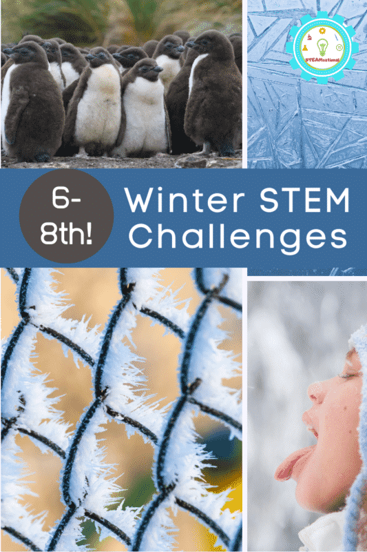 winter stem challenges for middle school