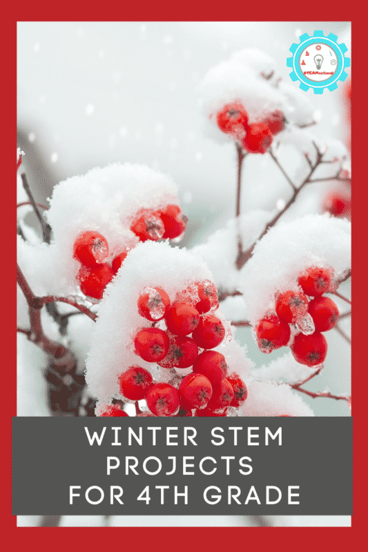 winter stem projects for 4th grade
