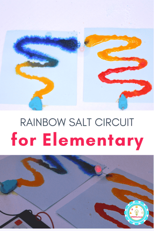 salt circuit activity for elementary