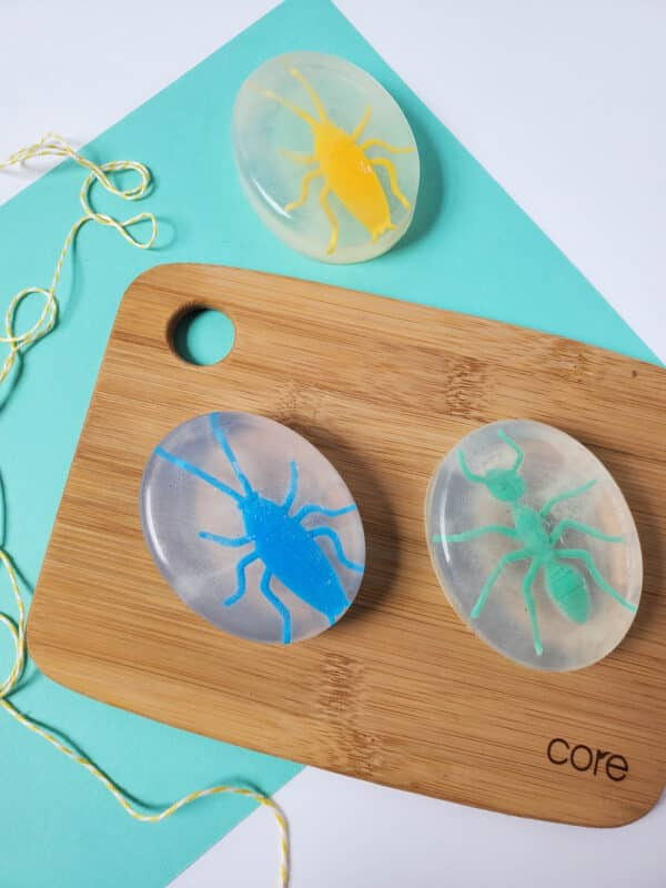 bug soap