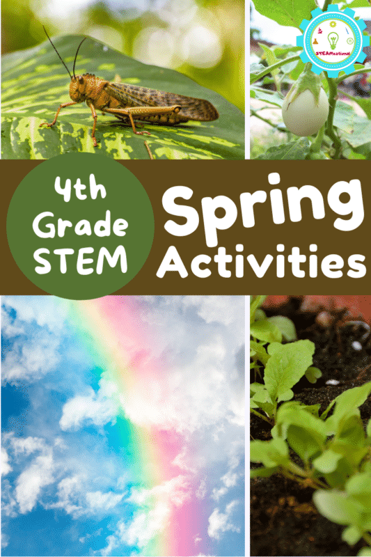 Calling all 4th grade teachers! Find spring STEM activities right here that go beyond general themes! All the spring STEM activities for 4th grade on this list are designed with 4th grade science themes in mind.