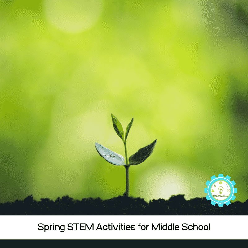 Middle school science is in-depth, but there is still room for hands-on STEM activities!