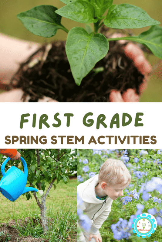 Get exciting STEM projects about weather, insects, gardening, and more with these spring STEM activities for first grade! 20+ project ideas!