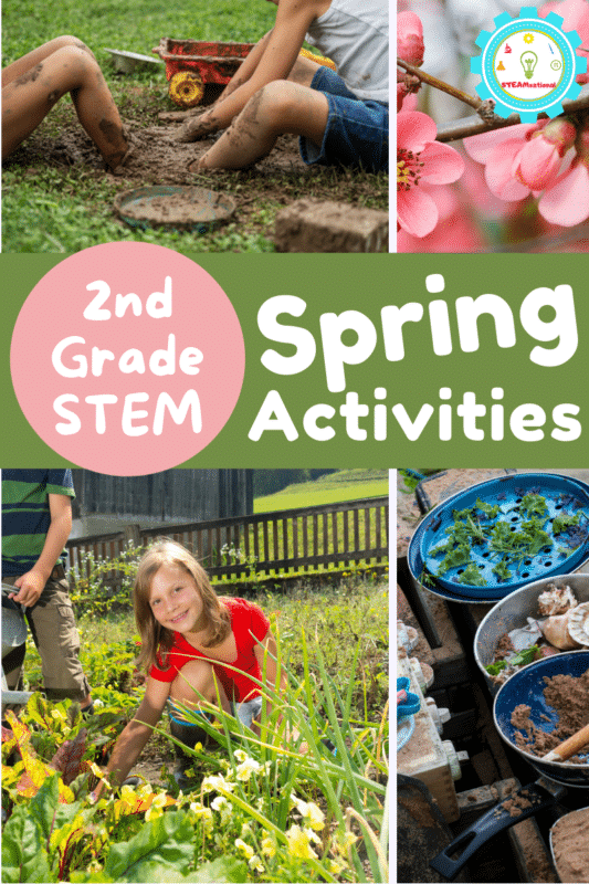 Over 20 Spring STEM Activities for 2nd grade to celebrate the return of sun, rainbows, flowers, and outdoor activities!