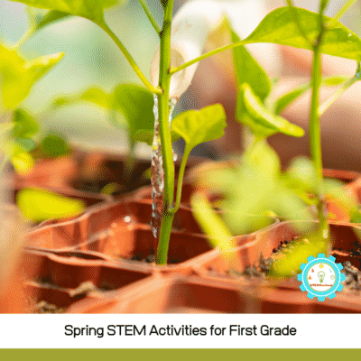 If you love spring and you love teaching science and STEM, you'll love this list of spring science projects for 1st grade!