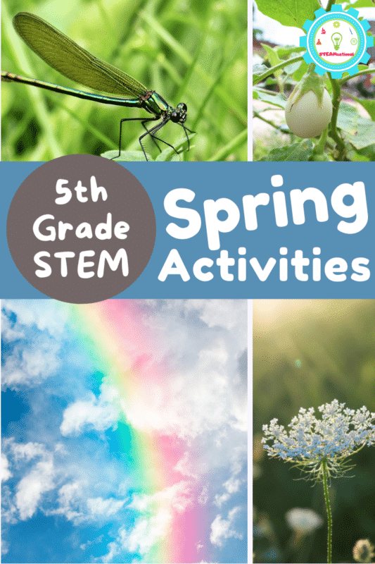 20+ spring STEM activities for 5th grade perfect for 10 and 11 year olds! Earth science, plants, insects, weather patterns, and more!