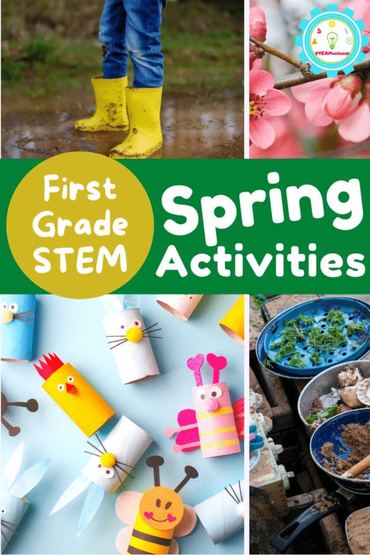 If you are looking for spring STEM activities, you've come to the right place! The activities on this list include exciting spring STEM activities for first grade.