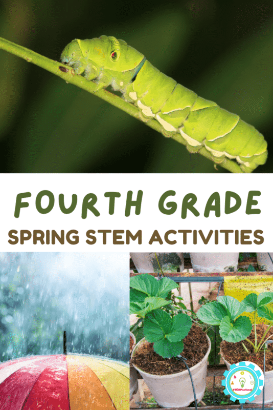 20+ spring STEM activities for 4th grade that will delight 9 and 10 year olds! Weather, earth science, plants, insects, and more!