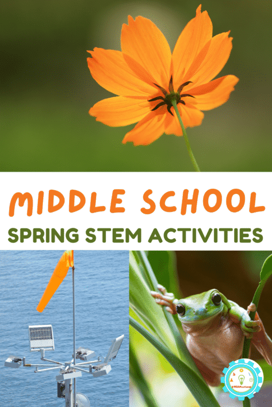 These hands-on spring STEM activities for middle school teach middle schoolers everything they need to know about science in the spring!