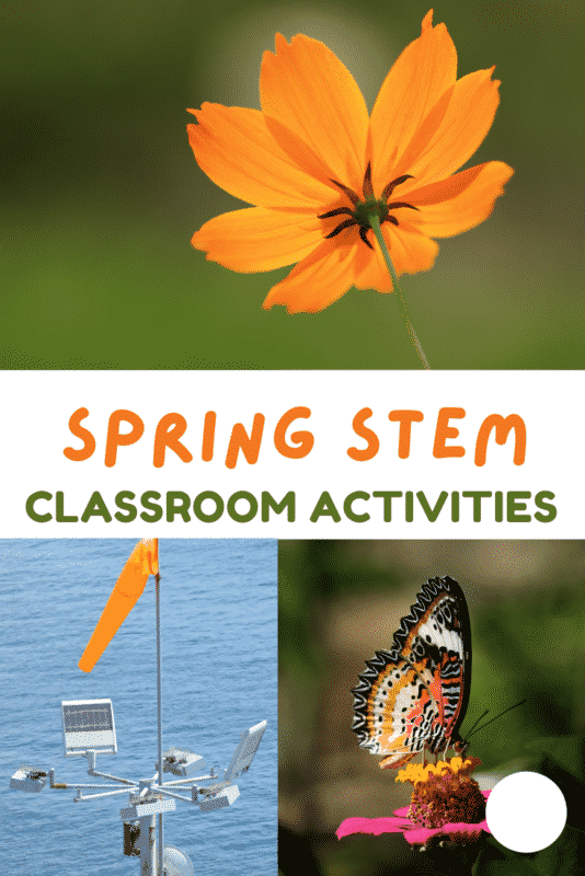 Spring STEM activities for the elementary classroom! Ideas for weather, life cycles, plants, and more!