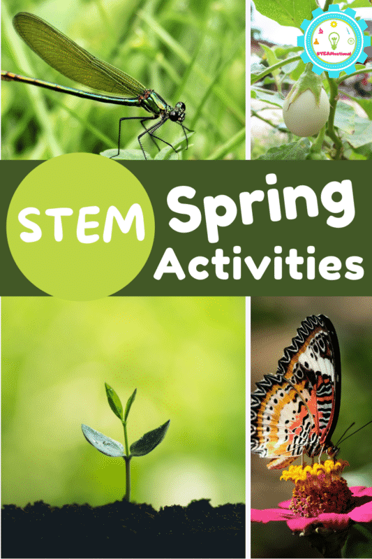 Spring STEM projects for the elementary classroom! Ideas for weather, life cycles, plants, and more!