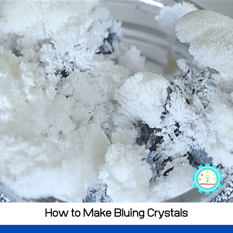 Follow along with these directions to learn how to grow bluing and ammonia crystals! This crystal garden science experiment is so beautiful and kids love doing it over and over!