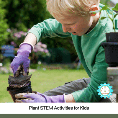 STEM Plant Activities- 10 Ways to Learn About Plants!