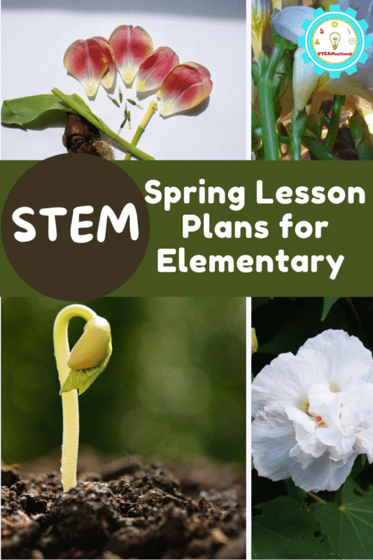 Elementary teachers your spring lesson planning is done! These spring lesson plans  give you everything you need to teach springtime STEM.