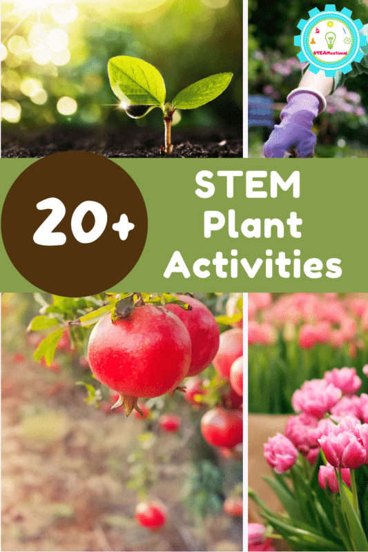 It's spring, so that means it's a great time to learn about plants! These plant STEM activities all have fun plant-related themes that make learning about plants fun.