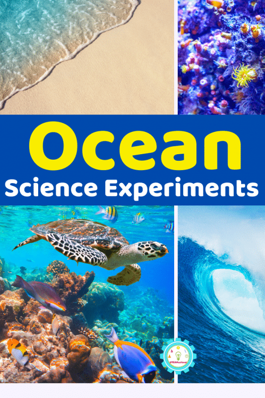 Over 11 ocean science experiments that feature everything kids need to know about ocean science! These ocean experiments will make a splash!