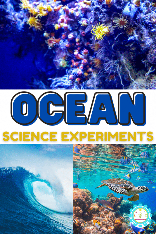 If you love the ocean, and you love science, these ocean science experiments are for you! Before you check out the complete list of ocean activities for kids, make sure you have these science supplies on hand.